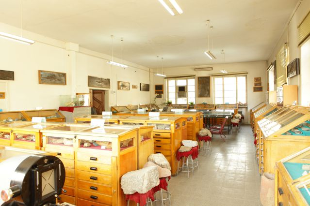 School of Geology